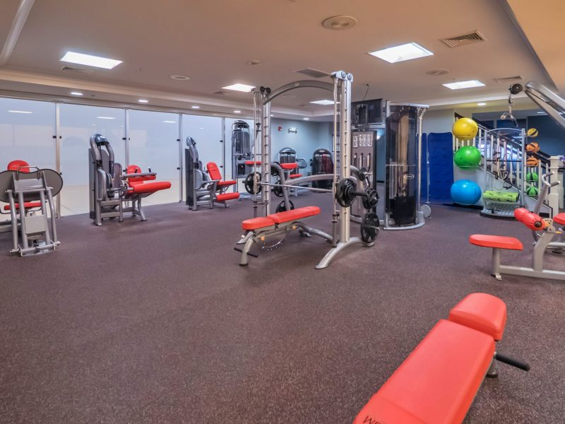 This image shows an expansive view of the fitness gym equipment for strength and chest workouts.