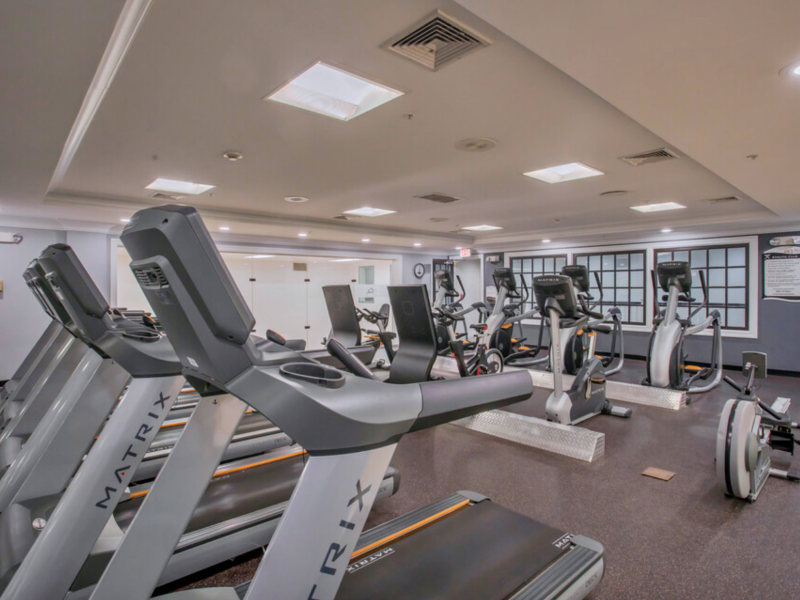 This image shows the TGM Anchor Point Marina fitness gym featuring the Treadmills. It is a great way to burn calories and help with weight loss because they simulate a real-life movement.